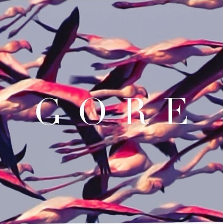 Deftones Gore