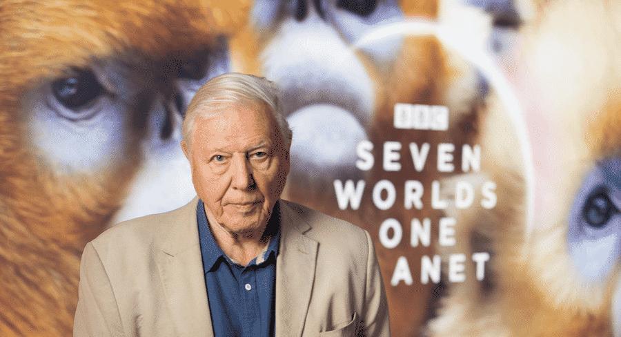 Mediaweek Roundup: Sean Pickwell, Attenborough, Ita Buttrose + more