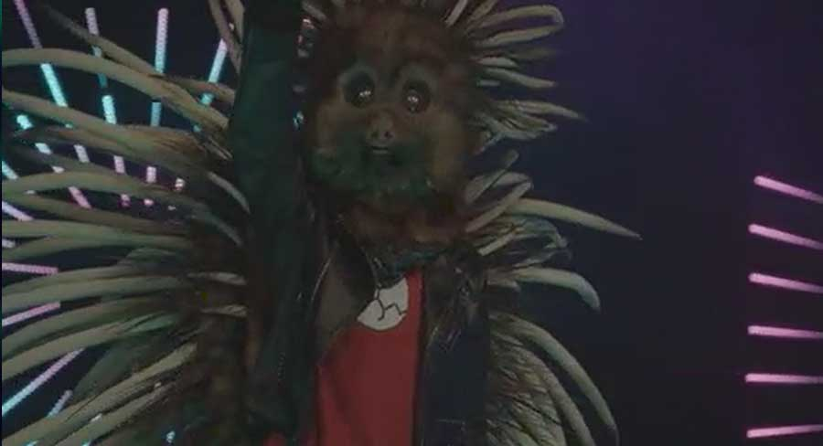 The Masked Singer Sloth
