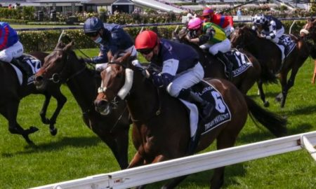 fox sports melbourne cup